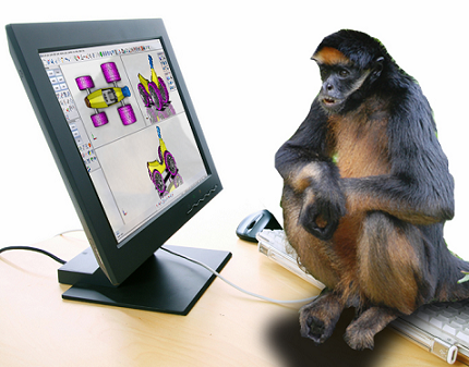 Monkey-Using-Tools